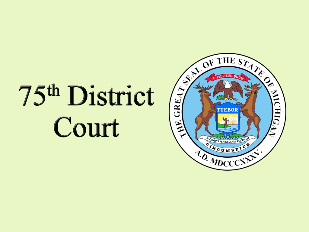 County of Midland, Michigan > Courts > 75th District Court